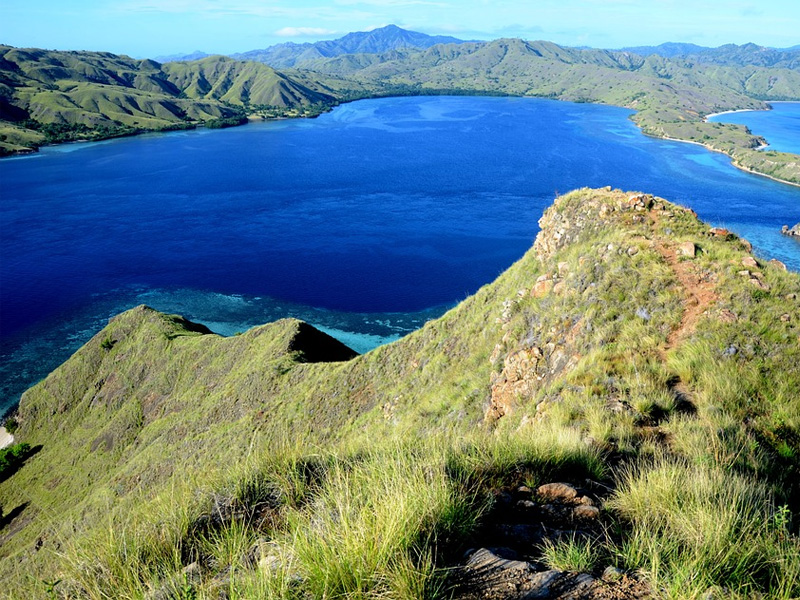 See how you can add Komodo dragron watching, snorkling and beach time to your Indonesia Holiday.